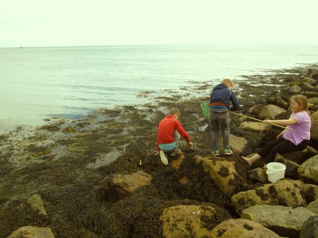 Crabbing9