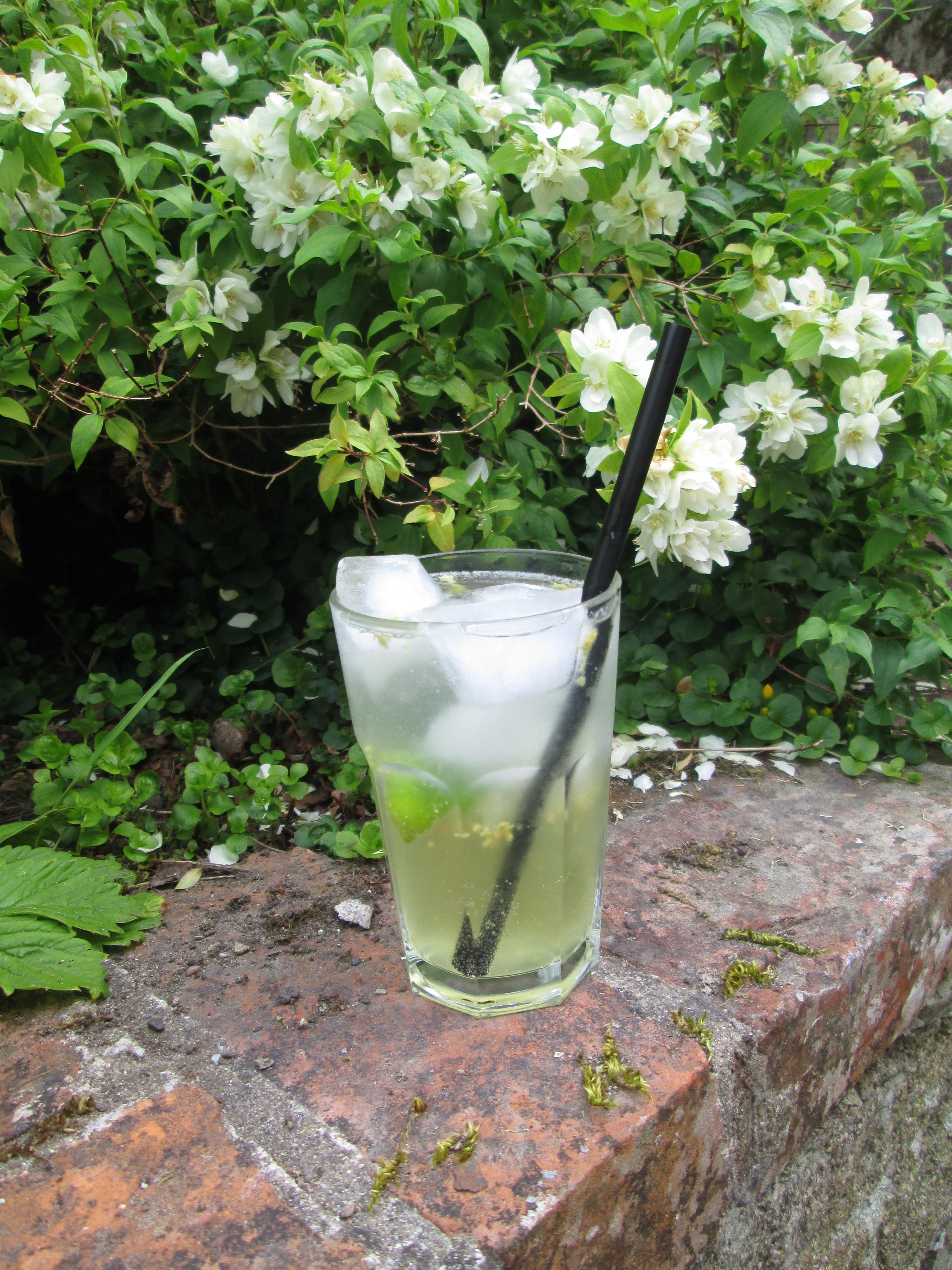 Gin and Elderflower- yumm!