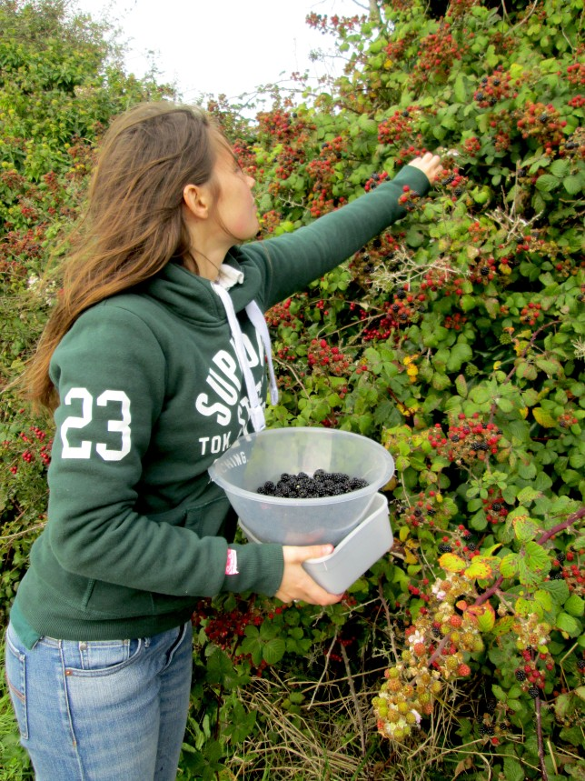 Blackberry picking as well as searching for hidden Sloes...