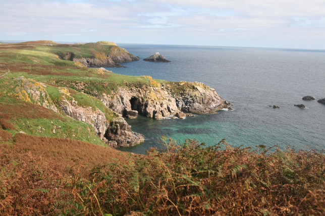 The Saltee Island was a paradise for my Grandad and I shall always think of him when I revisit this captivating place.